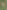 Patching Your Lawn with Warm Season Grass Seed [Video] - featured image