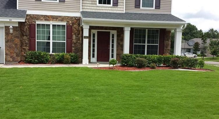 Emerald Zoysia Lawn Maintenance