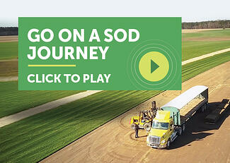 sod-journey-cta