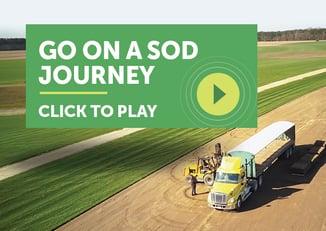 sod-journey-cta