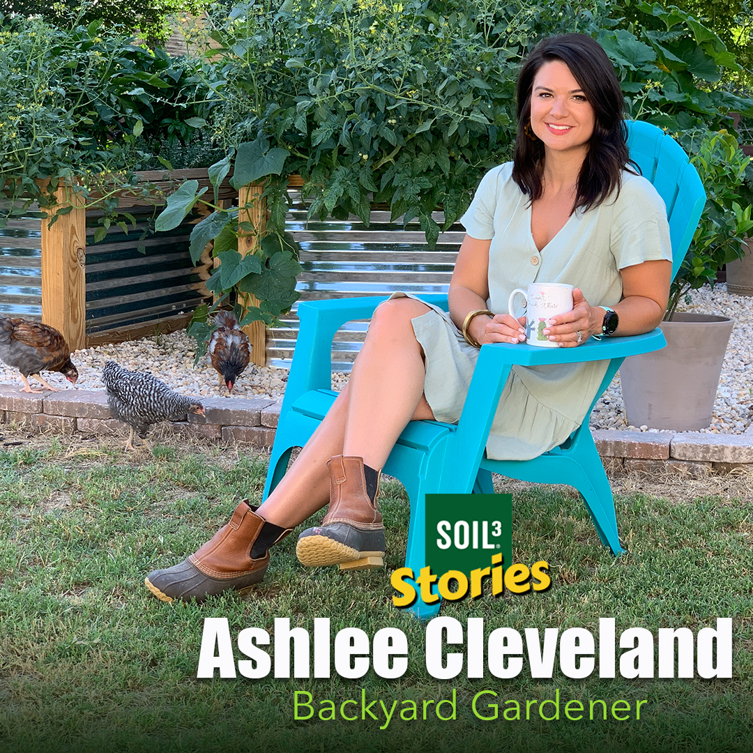 Soil3 Story: How a Backyard Vegetable Gardener Grew an Abundant Harvest [VIDEO]