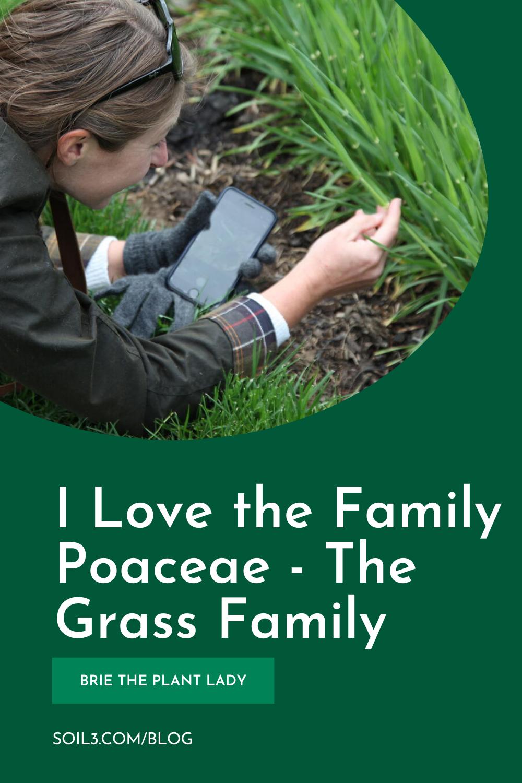 I LOVE FAMILY POACEA (1)