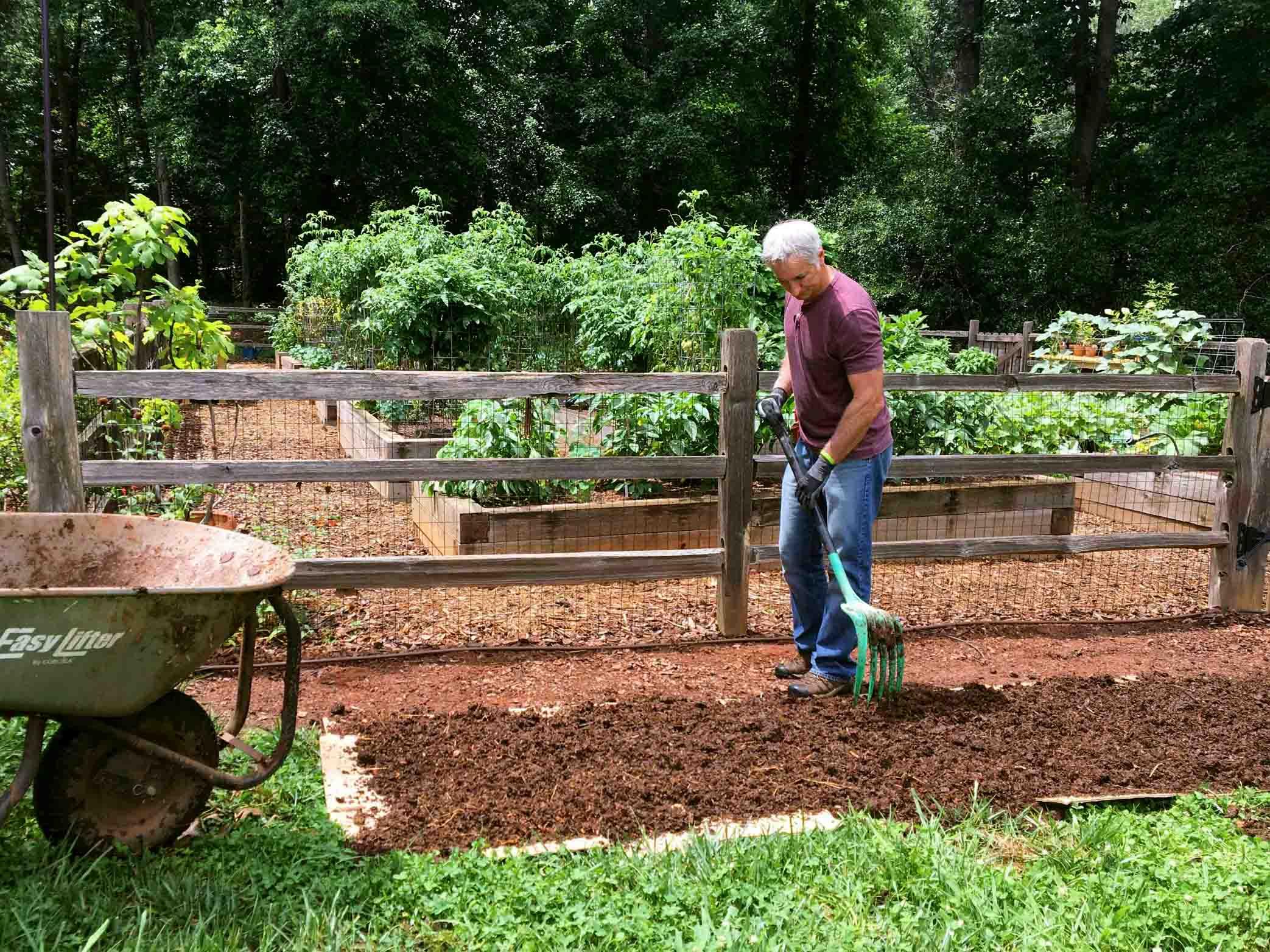 No-Till Gardening: Ditch Your Tiller
