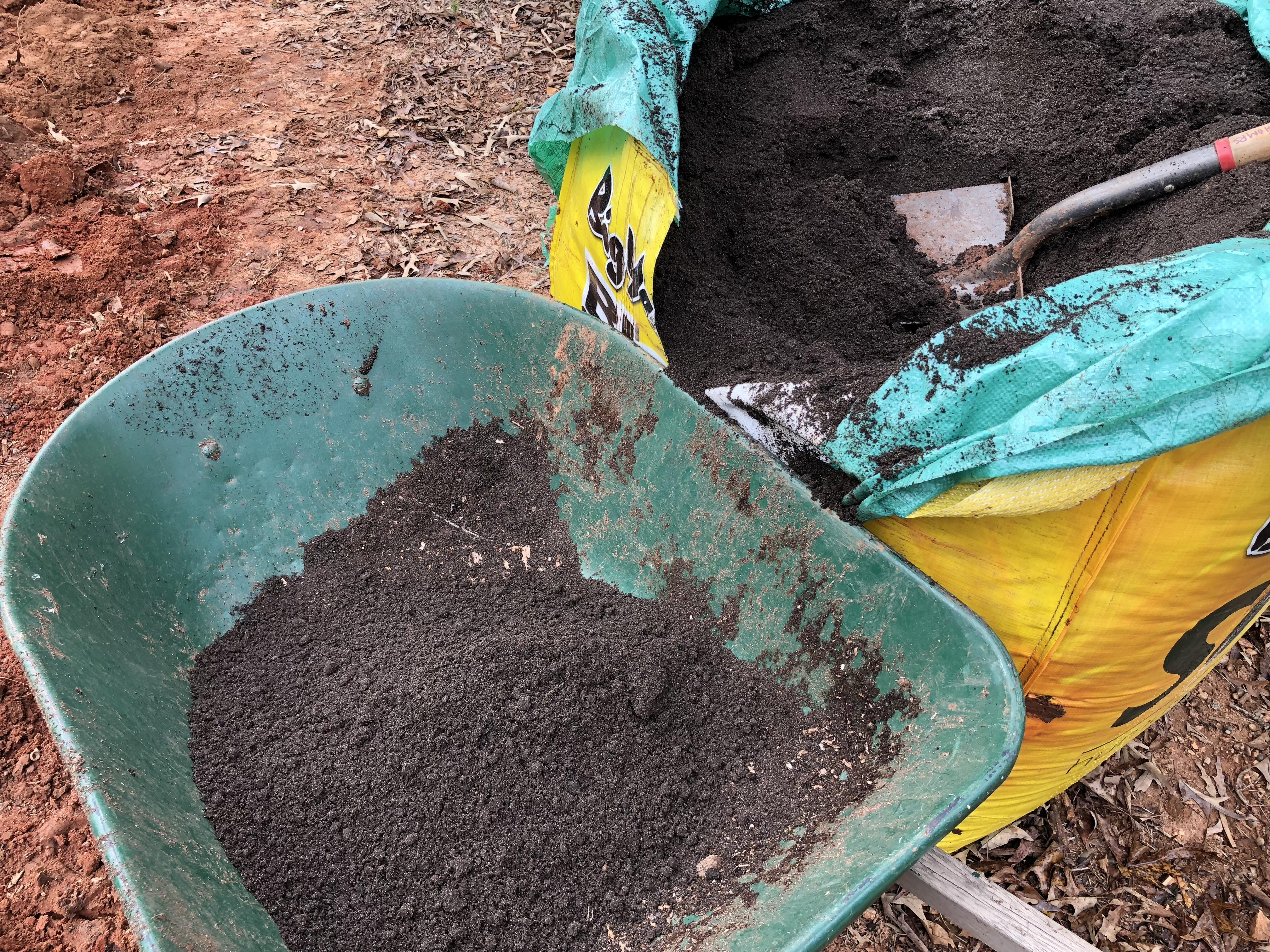 Potting Soil for Trees & Tree Fertilizer