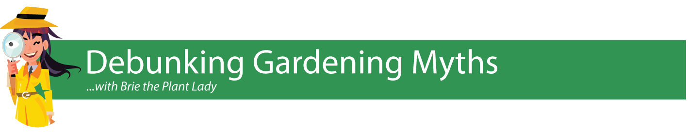Debunking-Gardening-Myths