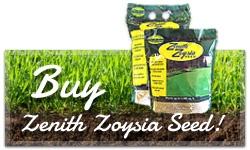 buy-seed-cta-1