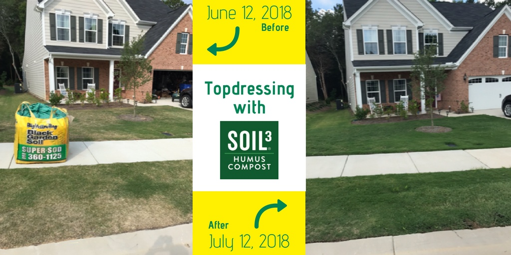 topdressing with Soil3 (1)
